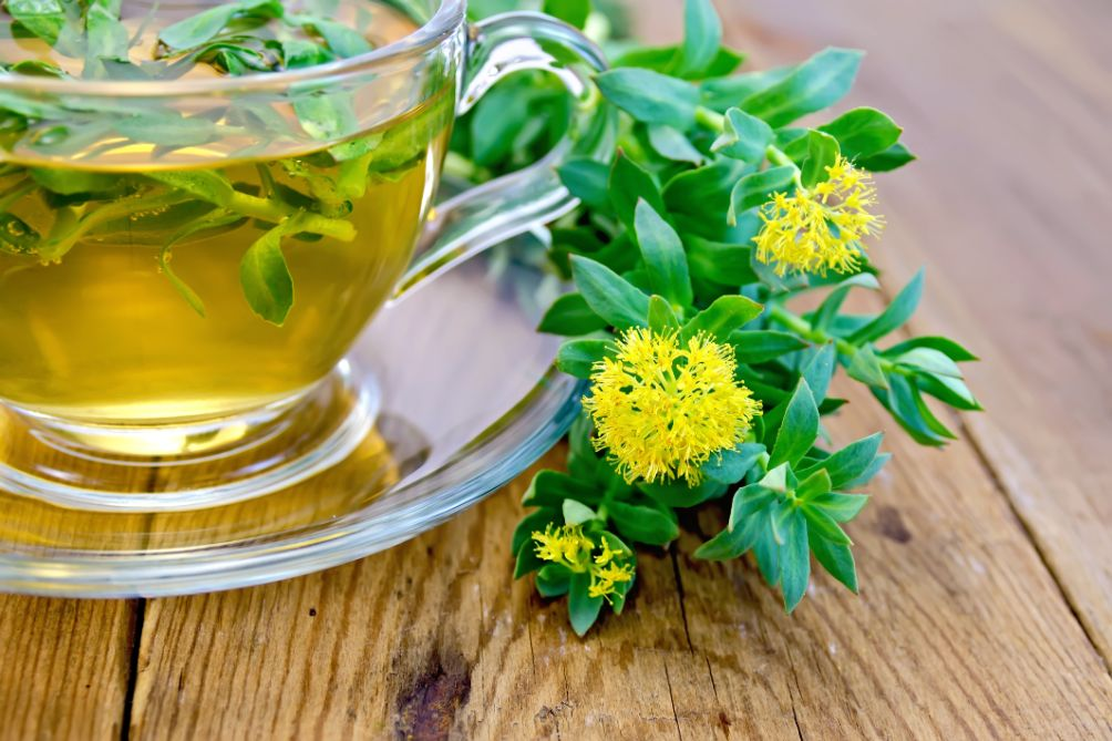 5 potężnych korzyści zdrowotnych Rhodiola Rosea
